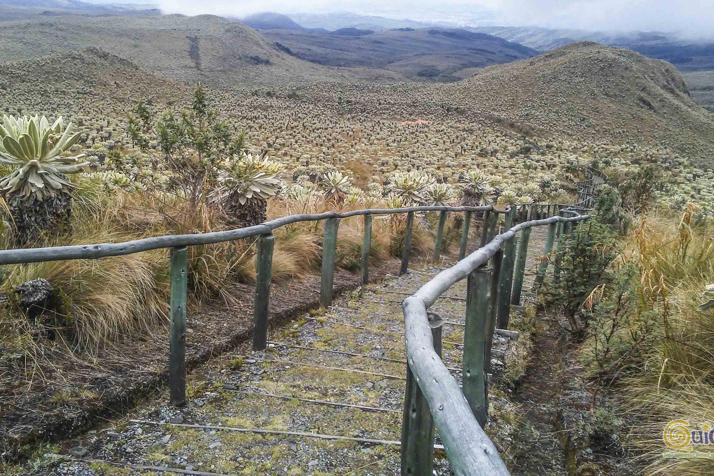 RESERVA ECOLÓGICA EL ÁNGEL Y TREN
