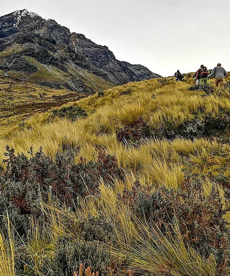 Climbing Tours Cotacachi Volcano Ecuador