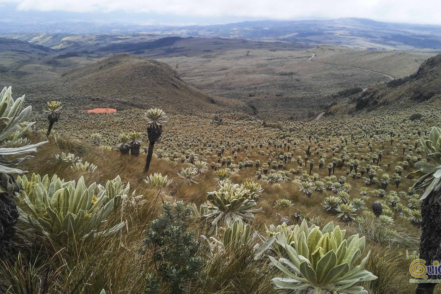 El Angel Ecological Reserve HIKING TOUR and Train